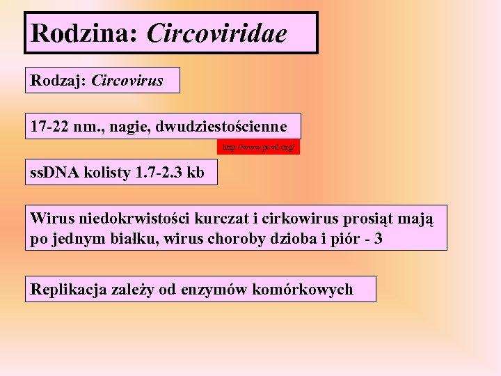 Rodzina: Circoviridae Rodzaj: Circovirus 17 -22 nm. , nagie, dwudziestościenne http: //www. pcvd. org/