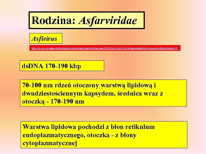 Rodzina: Asfarviridae Asfivirus http: //www. virustaxonomyonline. com/virtax/lpext. dll/vtax/agp-0013/dd 13 -fg? f=templates&fn=document-frame. htm&2. 0 ds.