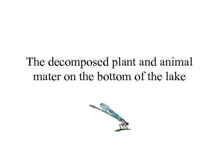 The decomposed plant and animal mater on the bottom of the lake