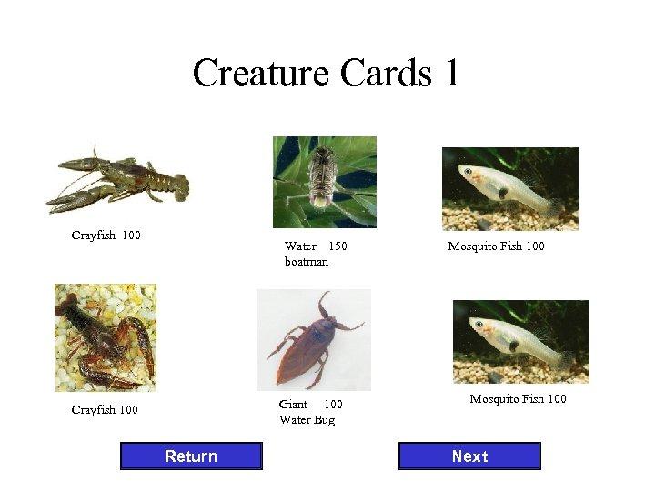 Creature Cards 1 Crayfish 100 Water 150 boatman Giant 100 Water Bug Crayfish 100
