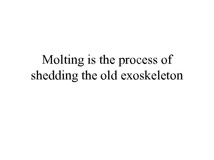 Molting is the process of shedding the old exoskeleton