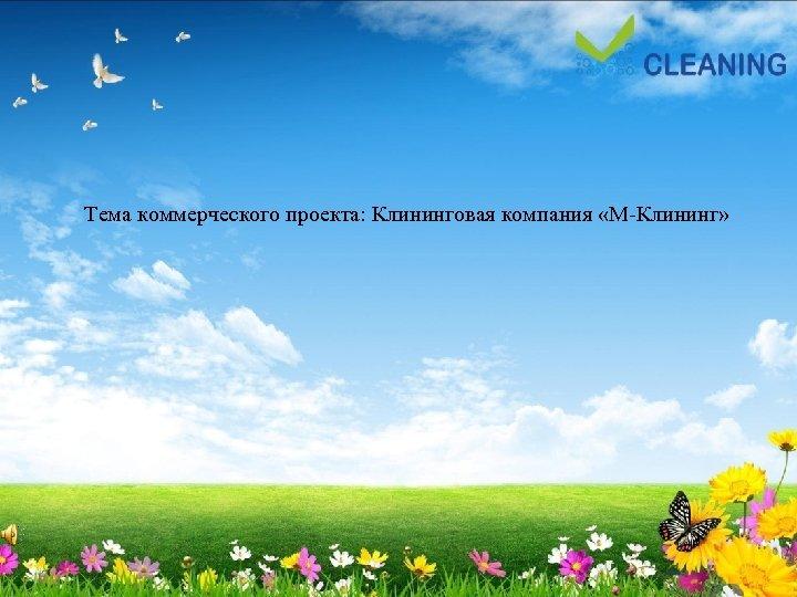 Тема коммерческого проекта: Клининговая компания «М Клининг»