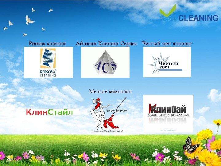 Ронова клининг Абсолют Клининг Сервис Чистый свет клининг Мелкие компании