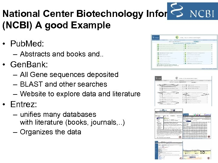 National Center Biotechnology Information (NCBI) A good Example • Pub. Med: – Abstracts and