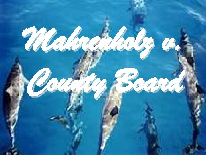 Mahrenholz v. County Board
