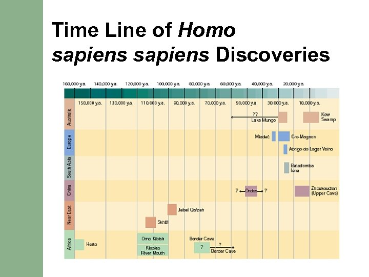 Time Line of Homo sapiens Discoveries