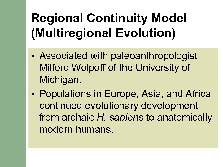 Regional Continuity Model (Multiregional Evolution) Associated with paleoanthropologist Milford Wolpoff of the University of