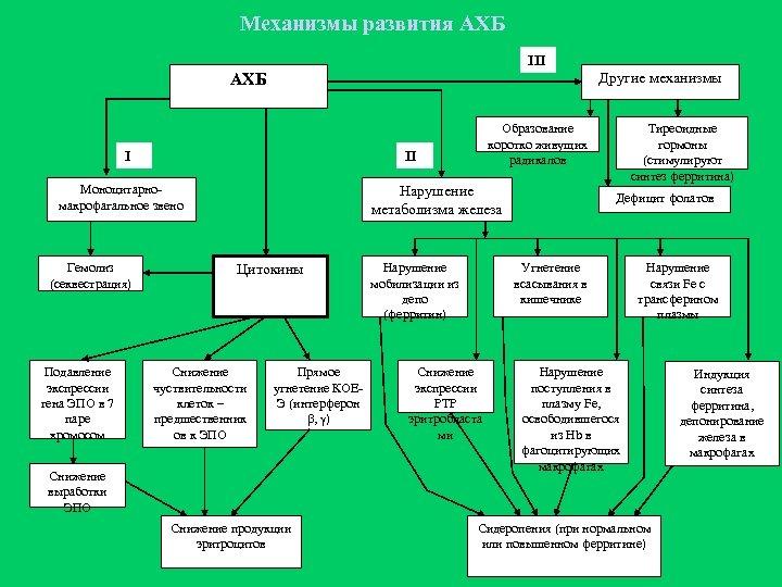 Механизмы развития АХБ III Другие механизмы АХБ I II Моноцитарномакрофагальное звено Гемолиз (секвестрация) Подавление