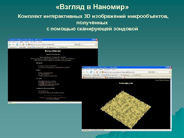 «Взгляд в Наномир» Комплект интерактивных 3 D изображений микрообъектов, полученных с помощью сканирующей