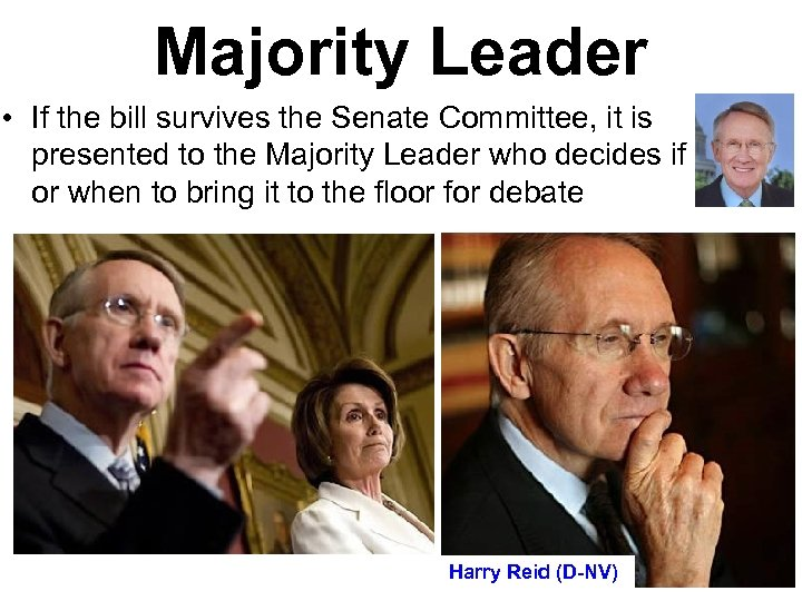 Majority Leader • If the bill survives the Senate Committee, it is presented to