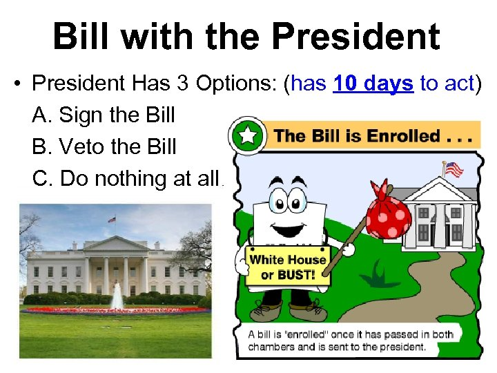 Bill with the President • President Has 3 Options: (has 10 days to act)