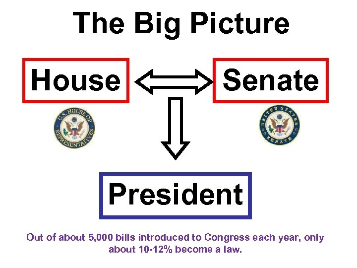 The Big Picture House Senate President Out of about 5, 000 bills introduced to