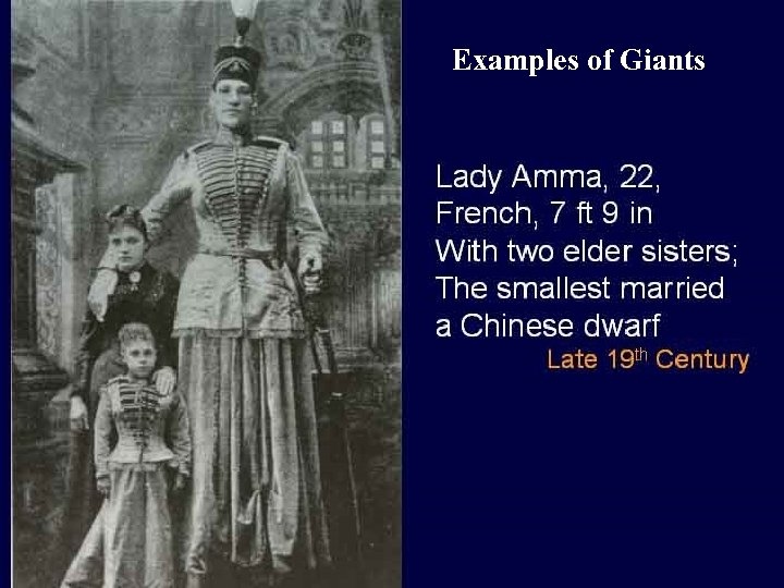 Examples of Giants