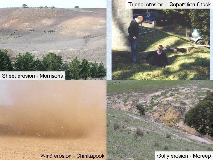 Tunnel erosion – Separation Creek Sheet erosion - Morrisons Wind erosion - Chinkapook Gully