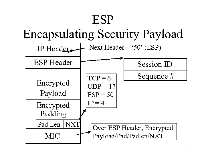 ESP Encapsulating Security Payload IP Header Next Header = ' 50' (ESP) ESP Header