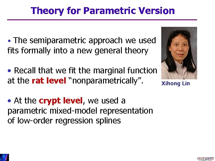 Theory for Parametric Version • The semiparametric approach we used fits formally into a