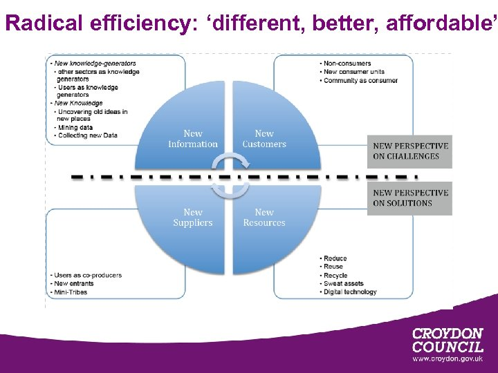 Radical efficiency: 'different, better, affordable'