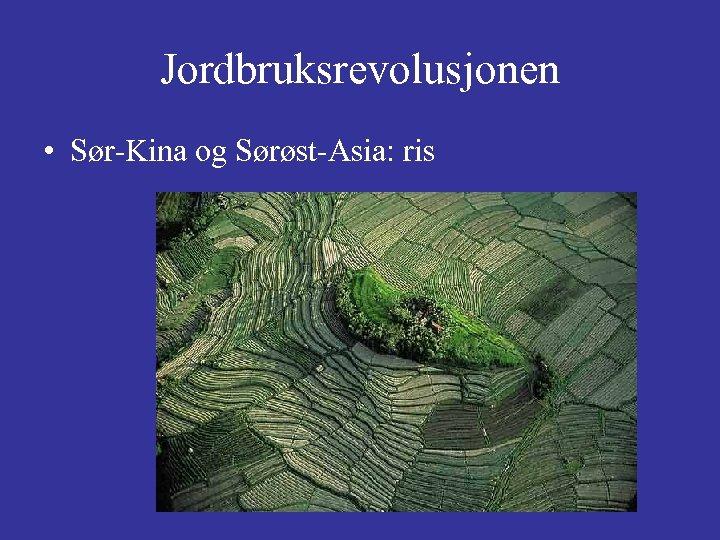Jordbruksrevolusjonen • Sør-Kina og Sørøst-Asia: ris
