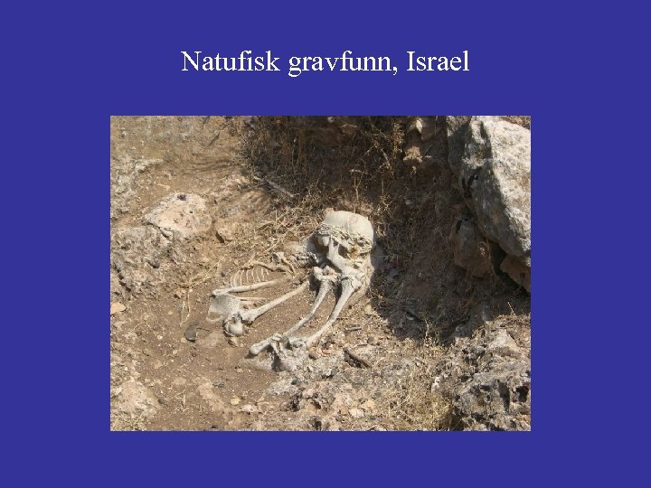Natufisk gravfunn, Israel