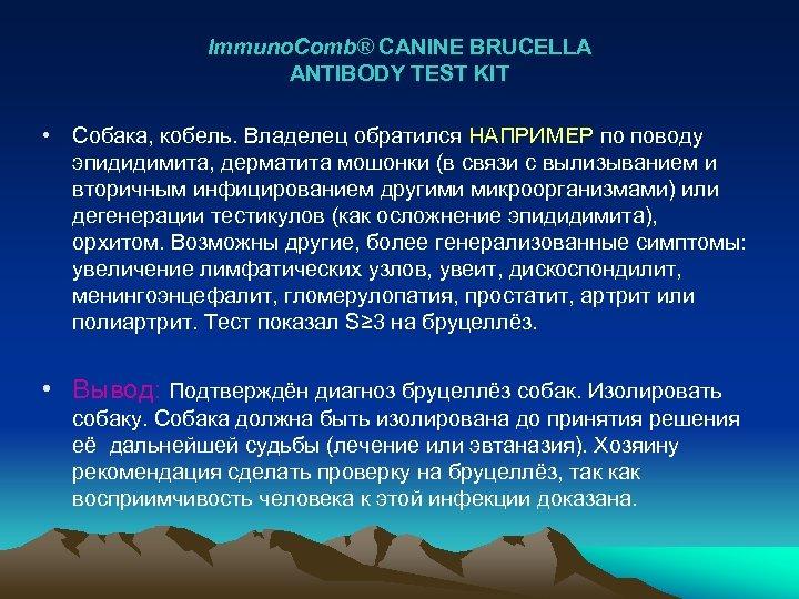 Immuno. Comb® CANINE BRUCELLA ANTIBODY TEST KIT • Собака, кобель. Владелец обратился НАПРИМЕР по