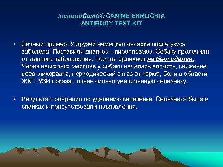 Immuno. Comb® CANINE EHRLICHIA ANTIBODY TEST KIT • Личный пример. У друзей немецкая овчарка