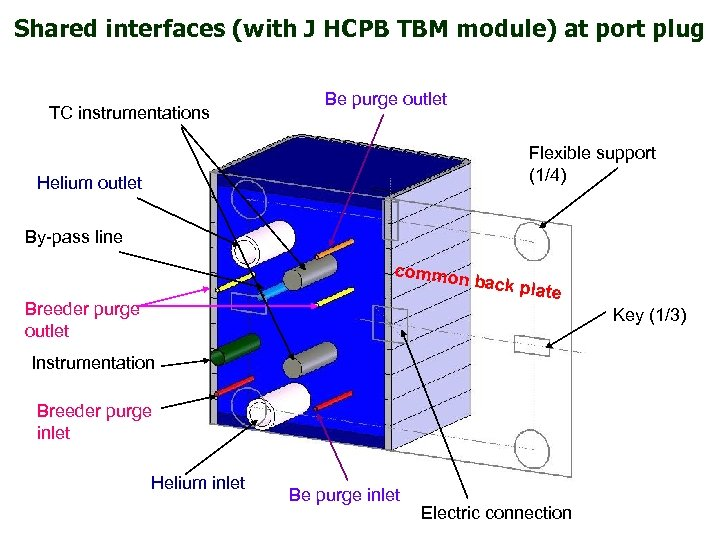Shared interfaces (with J HCPB TBM module) at port plug TC instrumentations Be purge
