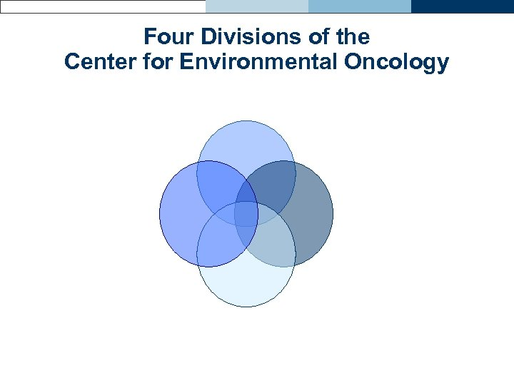 Four Divisions of the Center for Environmental Oncology