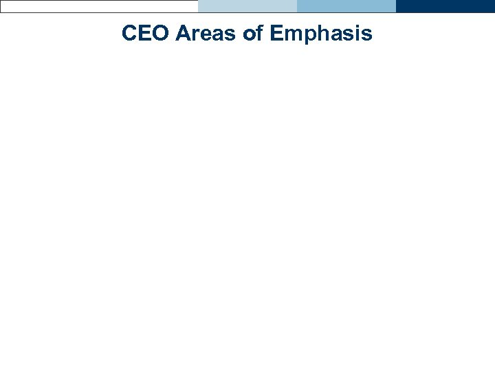 CEO Areas of Emphasis