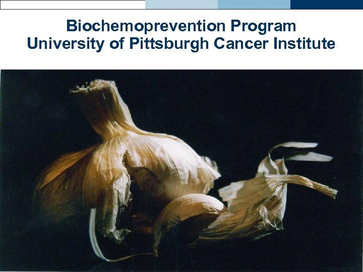 Biochemoprevention Program University of Pittsburgh Cancer Institute