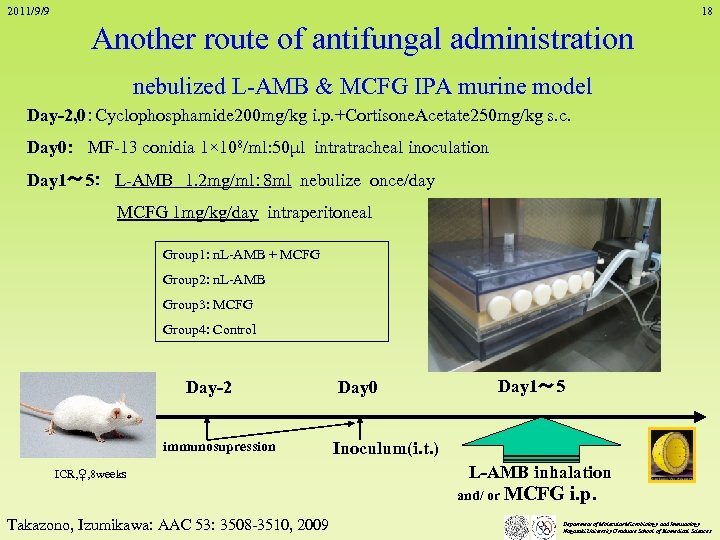 2011/9/9 18 Another route of antifungal administration nebulized L-AMB & MCFG IPA murine model