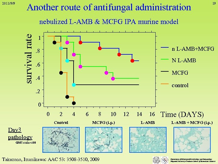 2011/9/9 Another route of antifungal administration 19 survival rate nebulized L-AMB & MCFG IPA