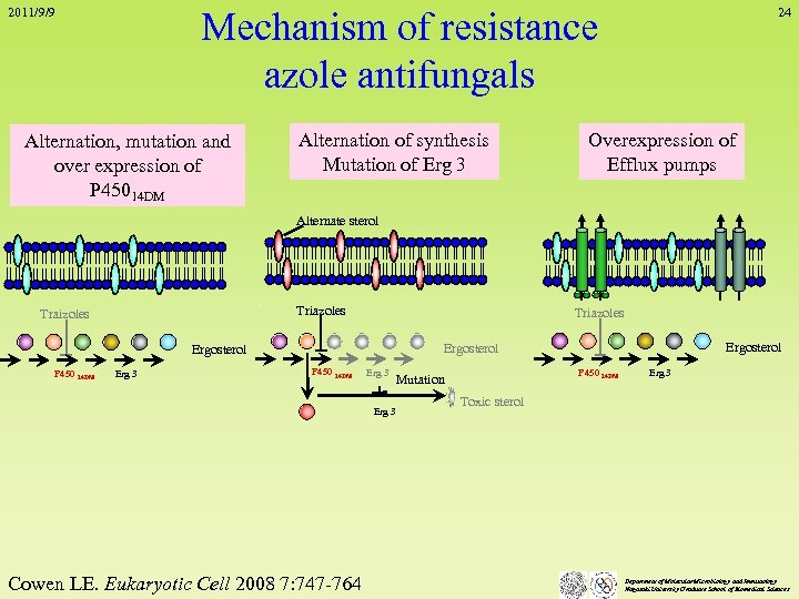 Mechanism of resistance azole antifungals 2011/9/9 Alternation, mutation and over expression of P 45014
