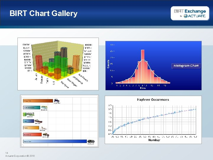 BIRT Chart Gallery 14 Actuate Corporation © 2010