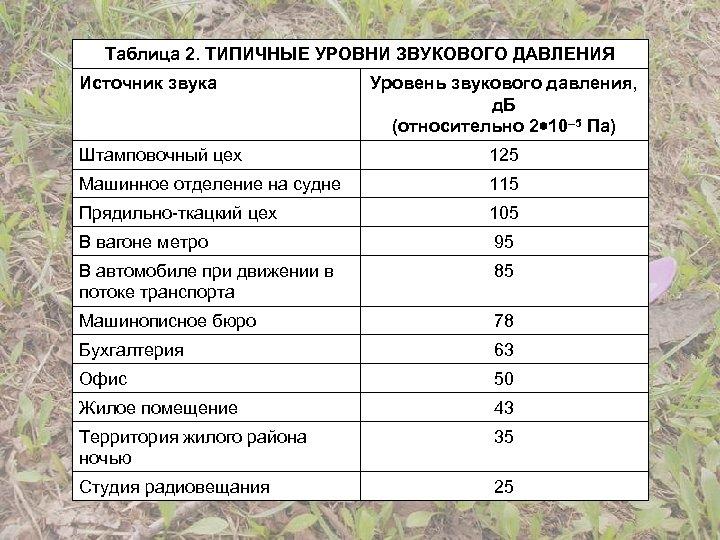 Таблица 2. ТИПИЧНЫЕ УРОВНИ ЗВУКОВОГО ДАВЛЕНИЯ Источник звука Уровень звукового давления, д. Б (относительно