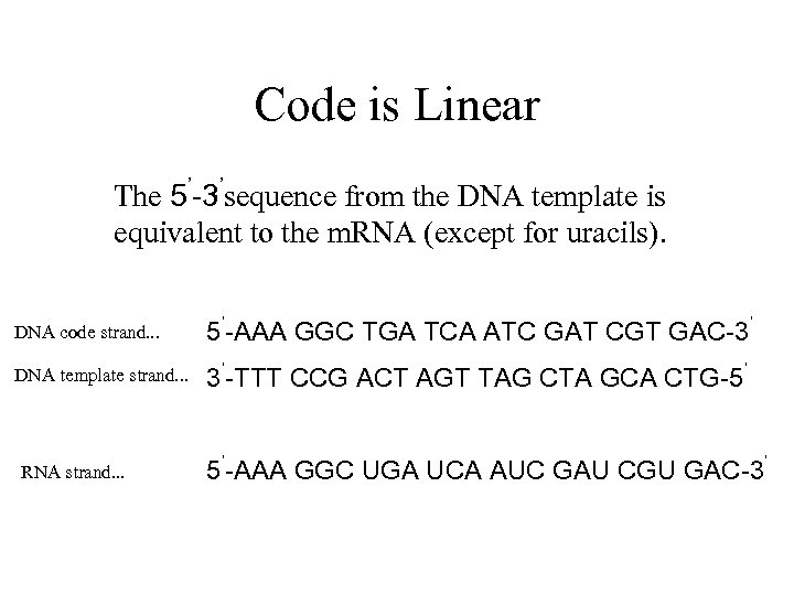 Code is Linear The 5'-3'sequence from the DNA template is equivalent to the m.