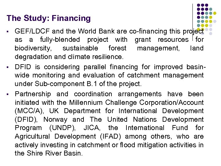 The Study: Financing § § § GEF/LDCF and the World Bank are co-financing this