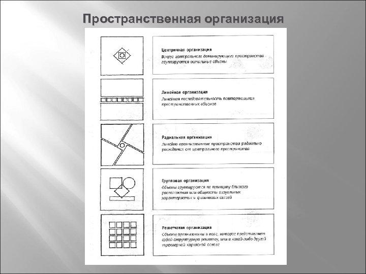 Пространственная организация