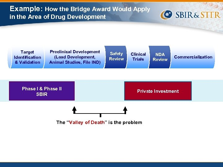 Example: How the Bridge Award Would Apply in the Area of Drug Development Target