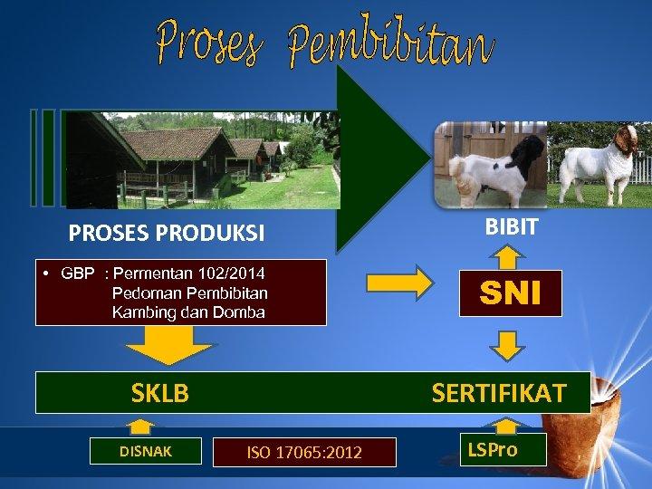 PROSES PRODUKSI BIBIT • GBP : Permentan 102/2014 Pedoman Pembibitan Kambing dan Domba SNI