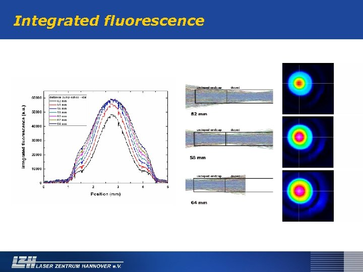 Integrated fluorescence