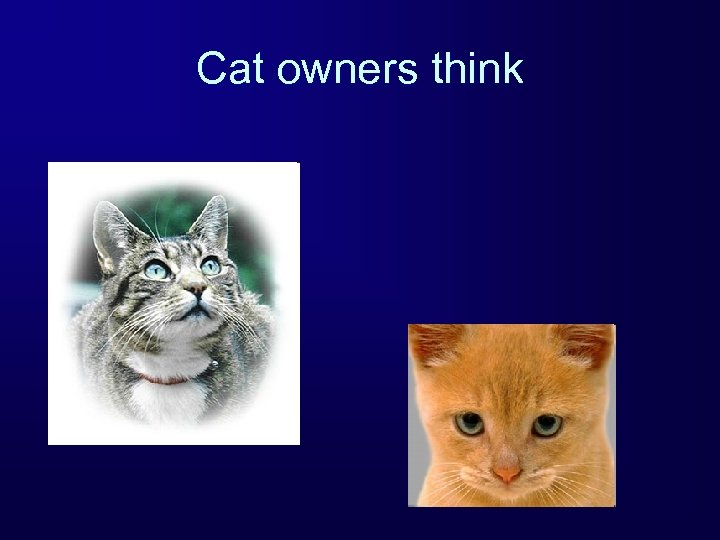 Cat owners think