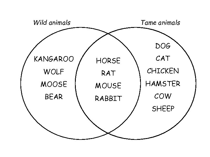 Wild animals Tame animals DOG KANGAROO HORSE CAT WOLF RAT CHICKEN MOOSE MOUSE HAMSTER