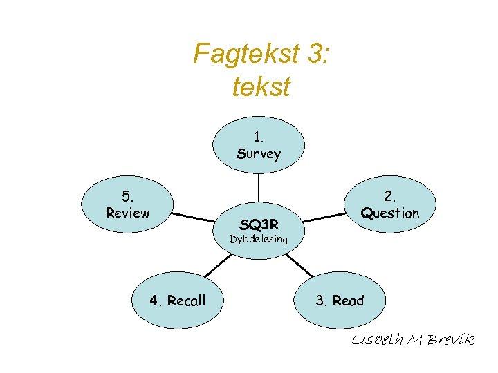 Fagtekst 3: tekst 1. Survey 5. Review SQ 3 R 2. Question Dybdelesing 4.