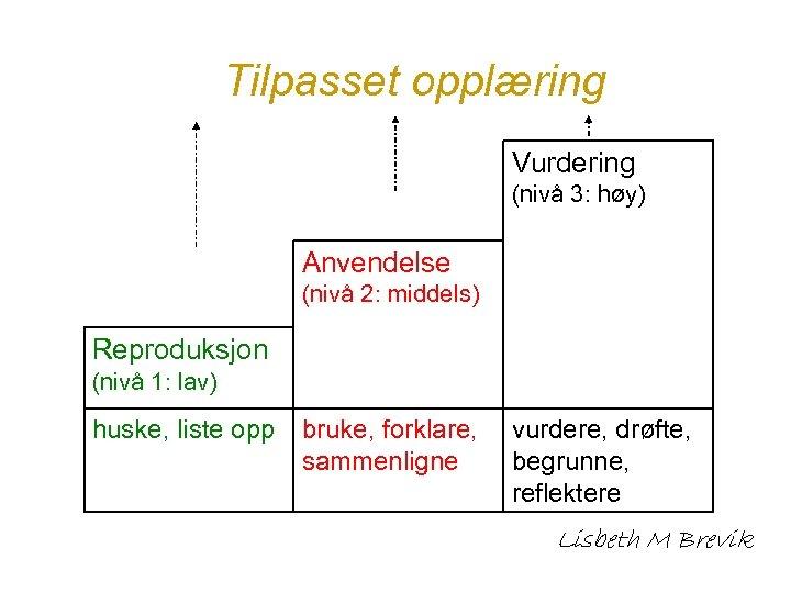 Tilpasset opplæring Vurdering (nivå 3: høy) Anvendelse (nivå 2: middels) Reproduksjon (nivå 1: lav)