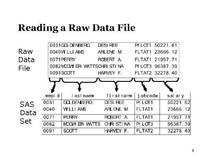Reading a Raw Data File SAS Data Set 6