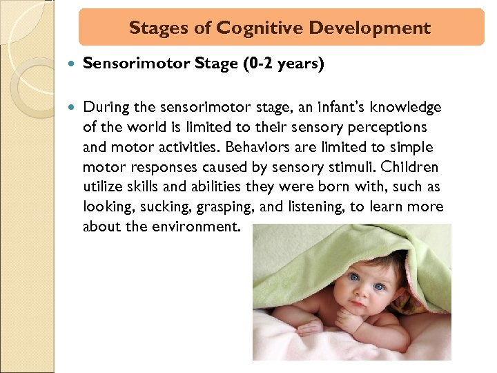 Stages of Cognitive Development Sensorimotor Stage (0 -2 years) During the sensorimotor stage, an
