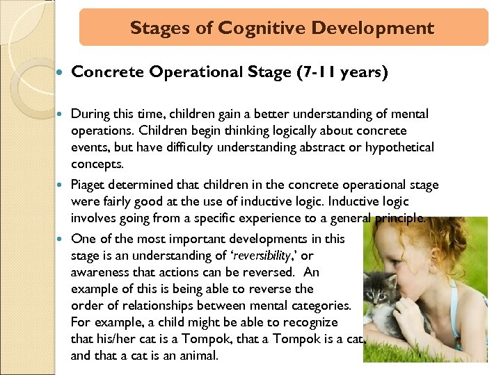 Stages of Cognitive Development Concrete Operational Stage (7 -11 years) During this time, children