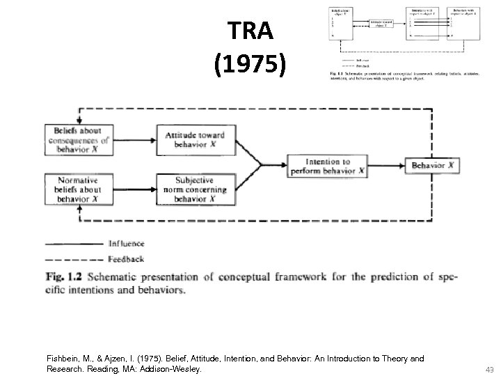 TRA (1975) Fishbein, M. , & Ajzen, I. (1975). Belief, Attitude, Intention, and Behavior:
