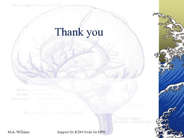 Thank you M. A. Williams Support for ICD-9 Code for NPH