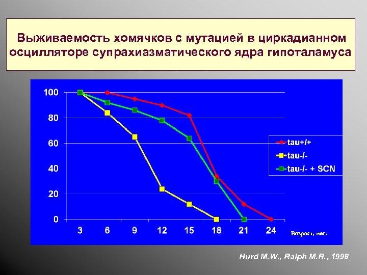Выживаемость хомячков с мутацией в циркадианном осцилляторе супрахиазматического ядра гипоталамуса Возраст, мес. Hurd M.